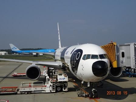 FLY!パンダ-3