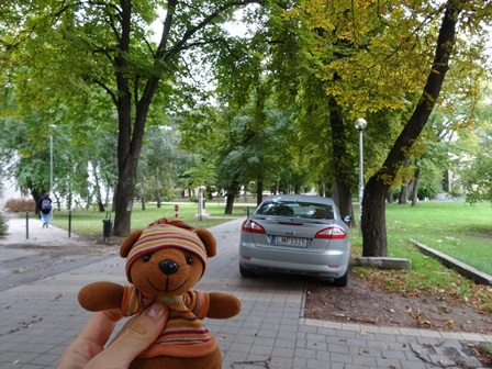9月17日の並木道