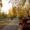 フニャ高秋景色