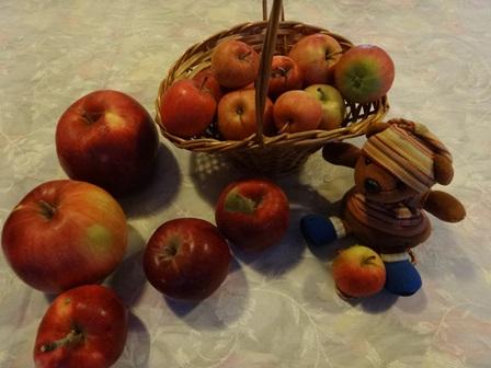 リンゴ カゴ