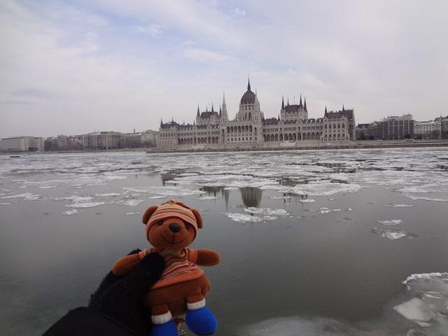 流氷のドナウ川