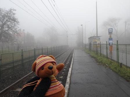 2014年1月濃霧