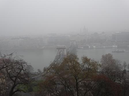 2014年1月3日 濃霧