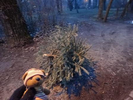 クリスマスツリーの末路