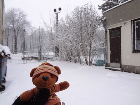 2013年雪景色4