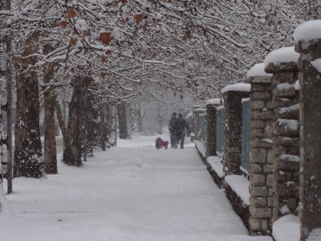 2013年 雪景色3
