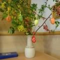 タマゴの木