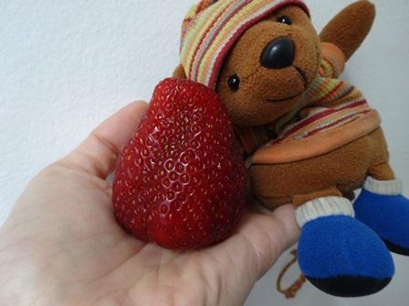 大きいイチゴ