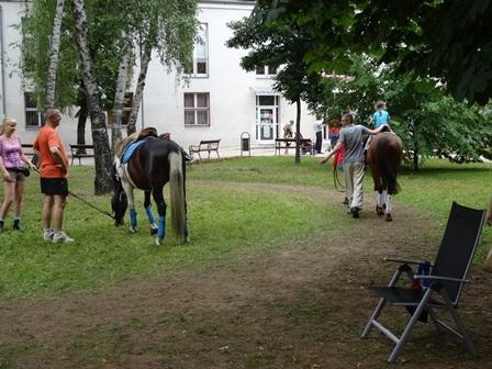 子どもの日10 馬