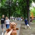 5月25日 子どもの日の並木道