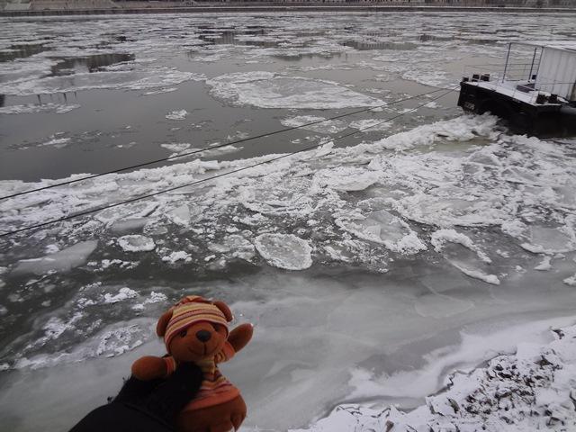 ドナウ川氷結