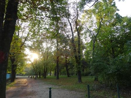 秋近づく2