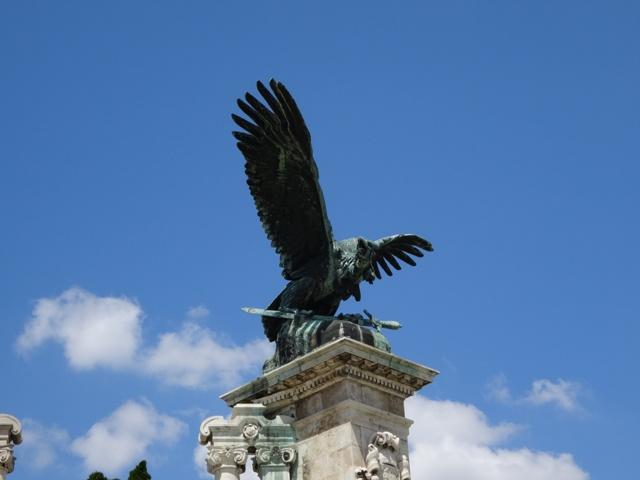 ブダ王宮の鳥