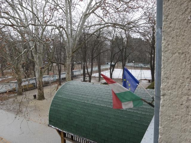 雪 積もりはじめ