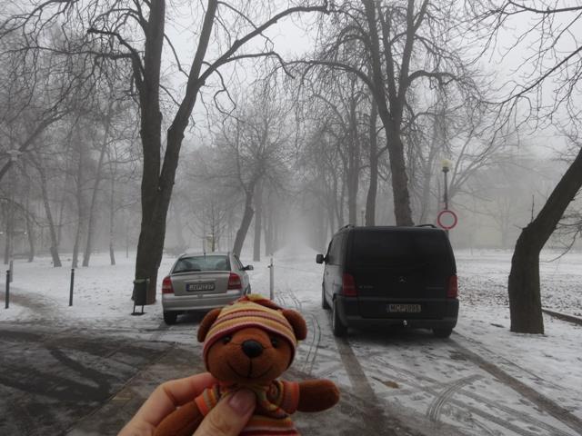 冬の並木道