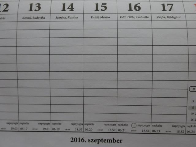 9月3週目アップ
