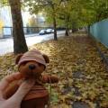 秋休み唯一の写真