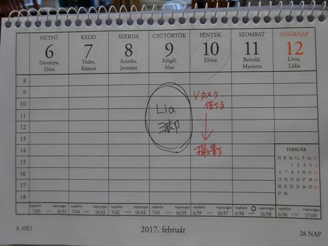 カレンダー2月2週目