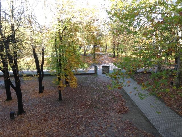 秋のフニャ高校庭