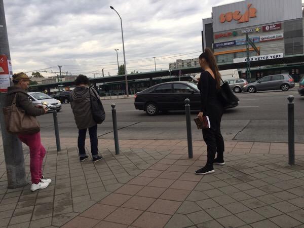 2018年9月22日(土)バス停