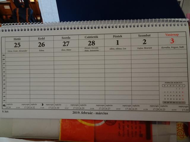 カレンダー今週